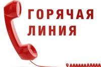 """В Челябинской области работают """"горячие линии"""" по выплатам пособия на детей от 3 до 7 лет"""